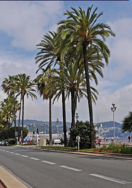 Viaggio organizzato Nizza Montecarlo Sanremo